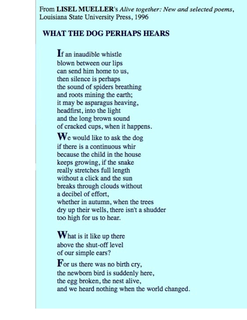 Liesel Mueller's Poem